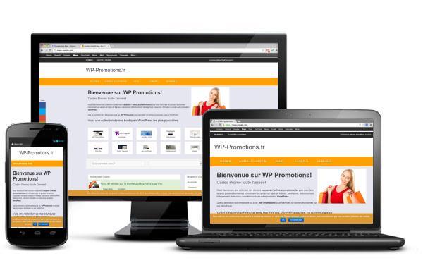 Faites le plein de promos WordPress avec WP Promotions